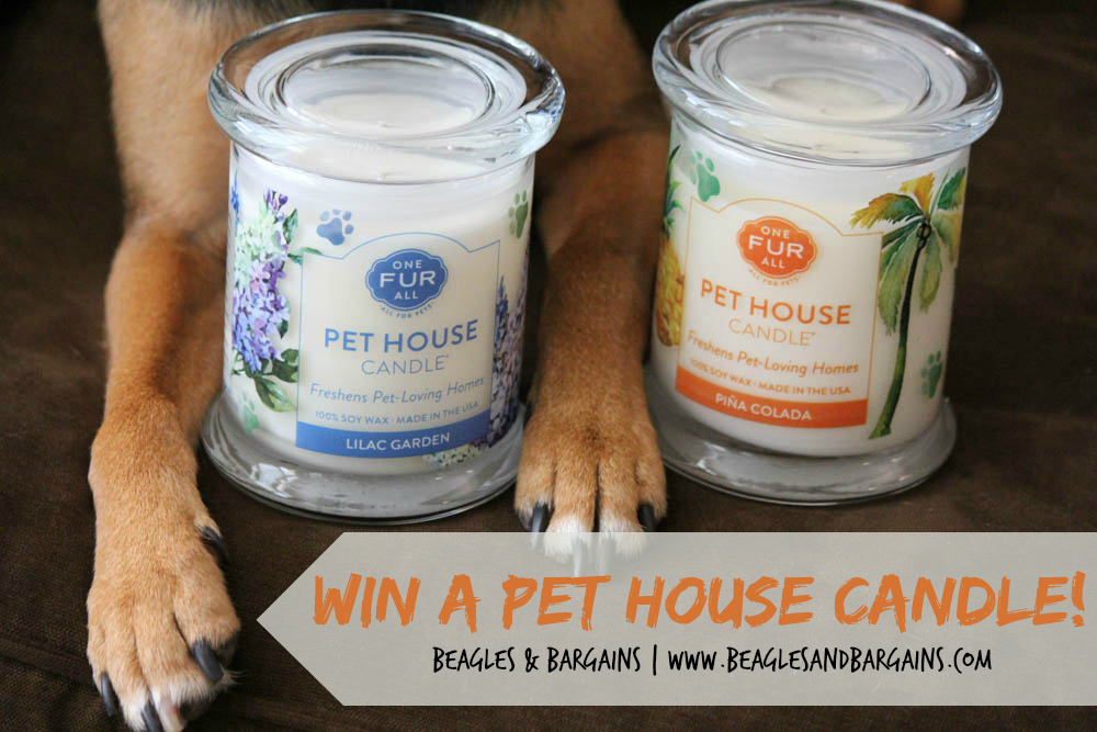 Win a Pet House Candle from One Fur All!