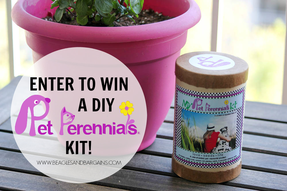 Enter to win a DIY Pet Perennials Kit