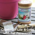 Celebrate Life and Love with Pet Perennials