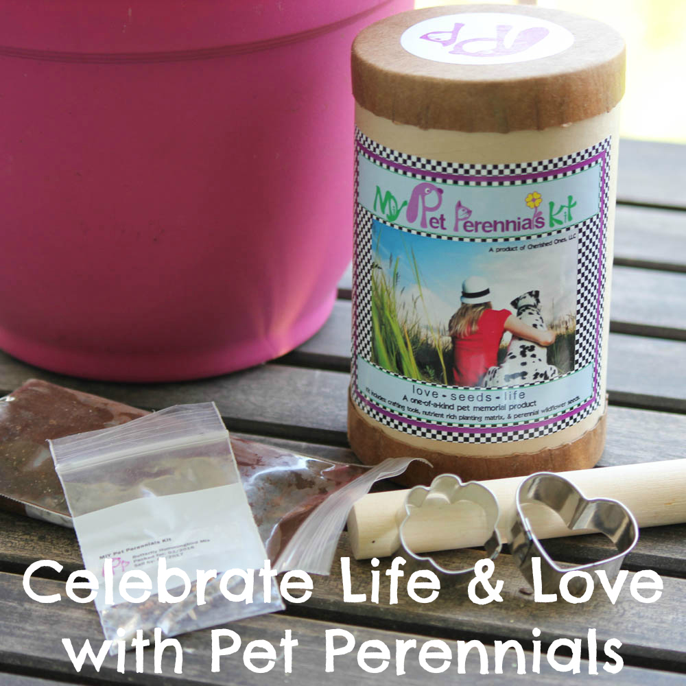 Celebrate Life & Love with Pet Perennials