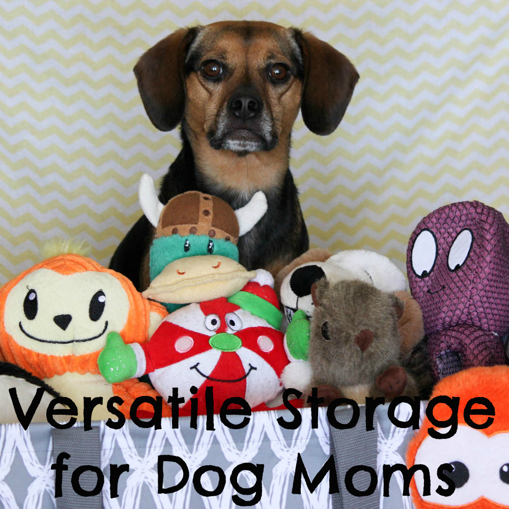 Versatile Storage for Dog Moms from Thirty-One
