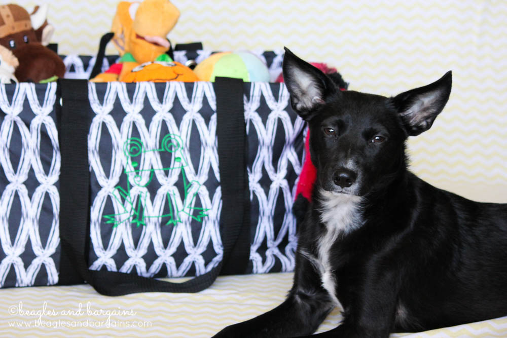 Ralph poses with his Frog embroidered Thirty-One Large Utility Tote