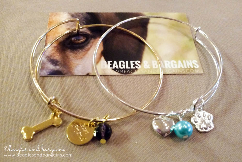 SWAG from Beagles & Bargains during BlogPaws Conference 2016.