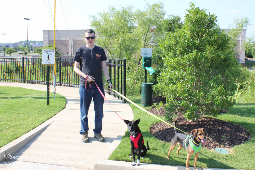 Pet Friendly Home2 Suites by Hilton has designated dog walking areas with stocked poop stations.