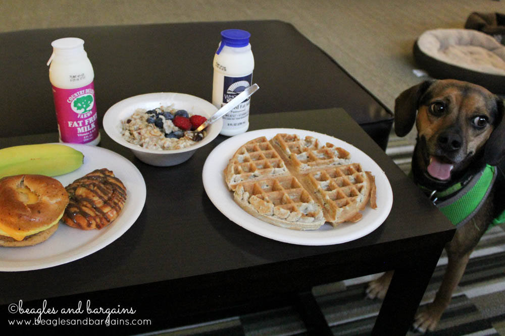 A yummy warm breakfast with oatmeal and waffles from Home2 Suites.