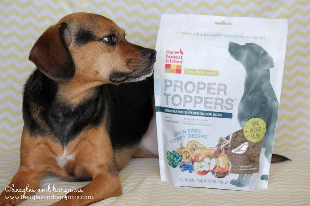 Luna wishes this bag of Proper Toppers from The Honest Kitchen would open up already!