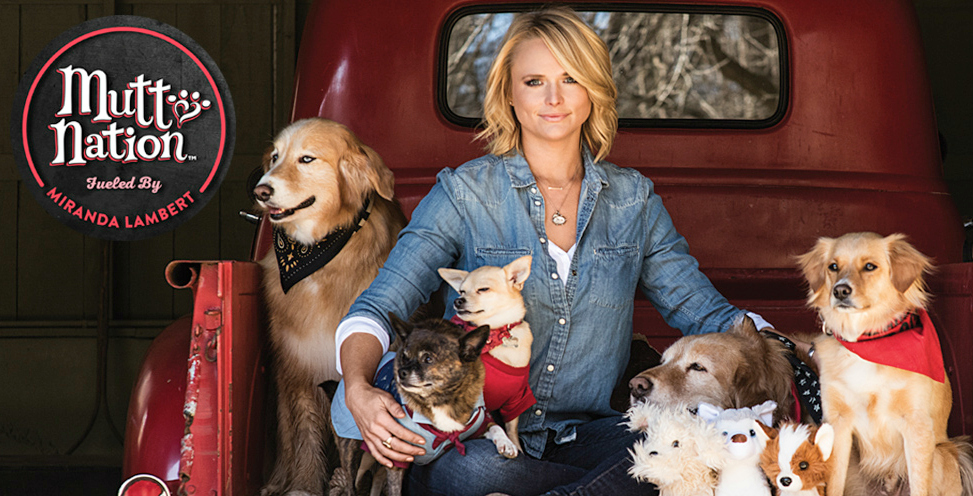 Miranda Lambert's MuttNation Foundation aims to end animal cruelty, neglect, and homelessness