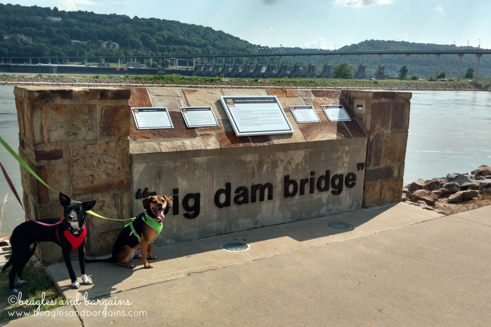 The Big Dam Bridge in Little Rock, Arkansas - RoadTrippinBeagle