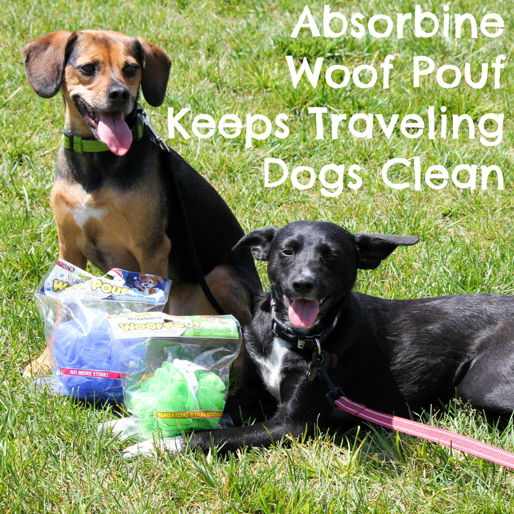 Absorbine UltraShield and ShowSeen Woof Poufs Keep Traveling Dogs Clean