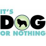 It's Dog or Nothing Logo