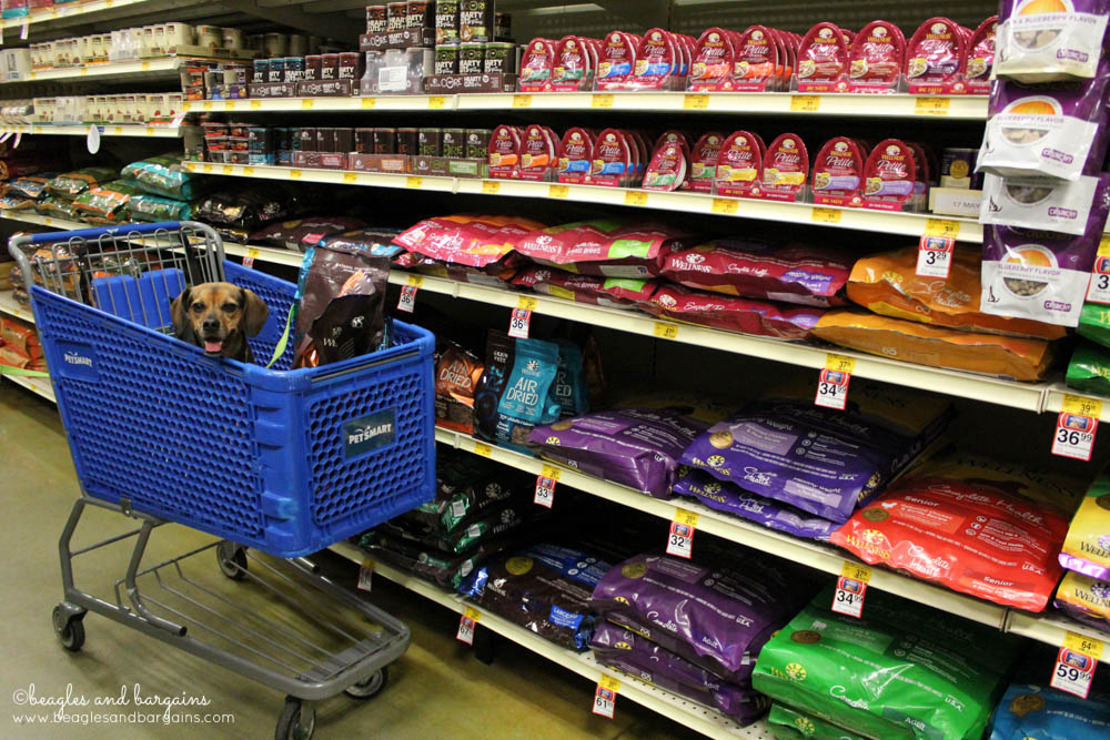 Luna is all smiles while shopping PetSmart for Wellness Pet Food