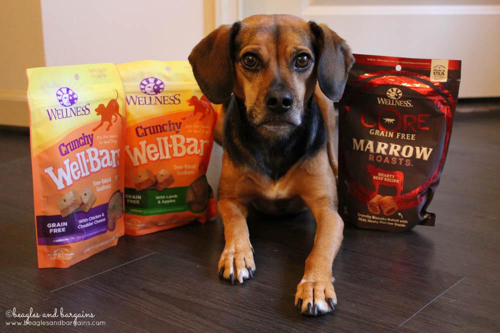 Luna with new treats from Wellness Pet Food - WellBars and CORE Marrow Roasts