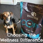 Choosing the Wellness Difference #WellnessPet