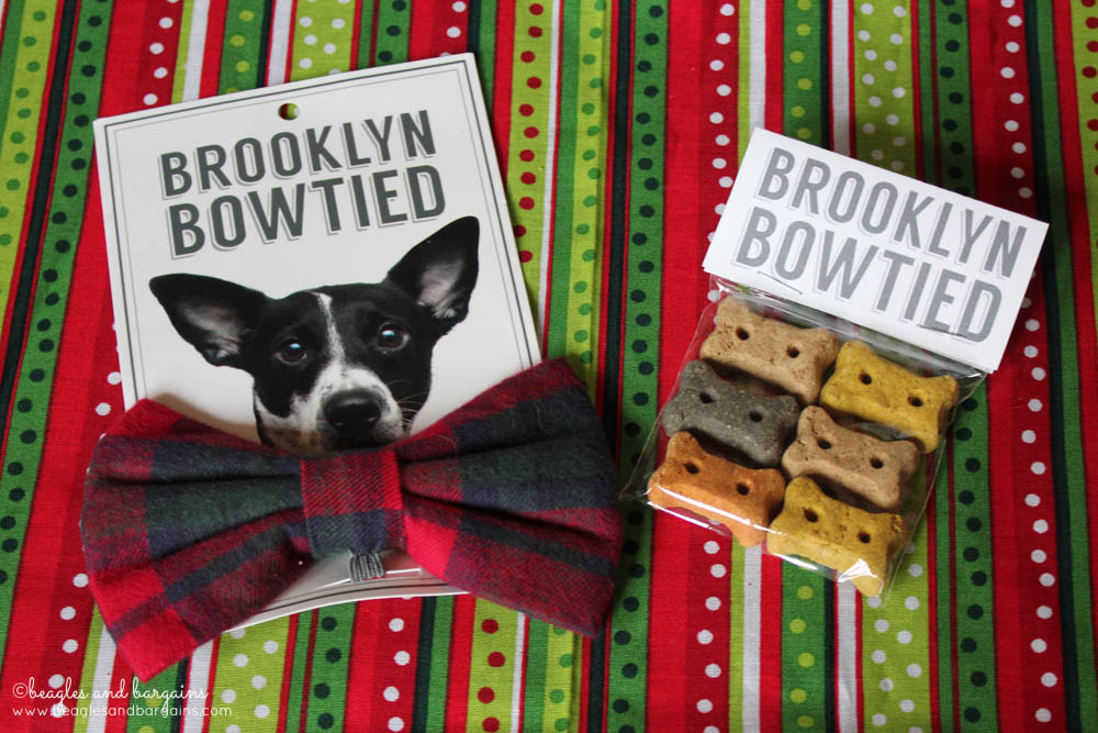 Brooklyn Bowtied Bow Ties for Dogs