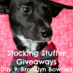 Stocking Stuffer Giveaway Day 9: Brooklyn Bowtied