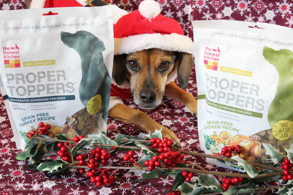 Santa Luna loves her crunchy Proper Toppers from The Honest Kitchen