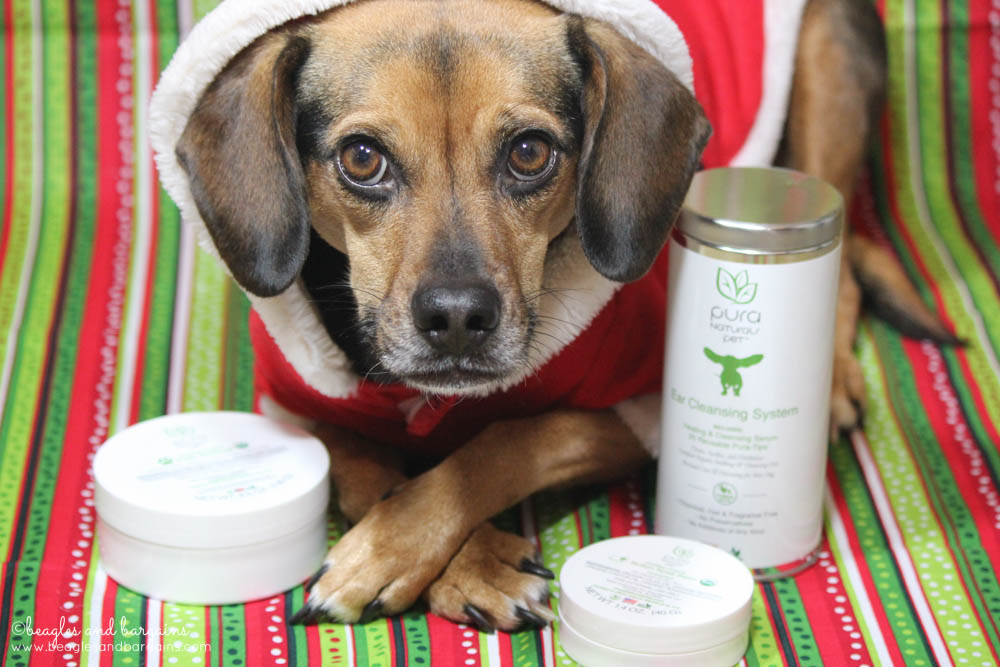 Luna with Paw Rescue, Nose Butter, and Ear Cleansing System from Pura Naturals Pet