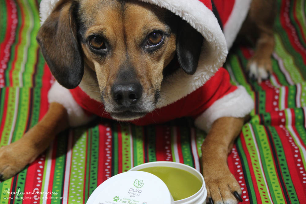 Pura Naturals Pet Paw Rescue saves Luna's paws from the cold and dry winter weather