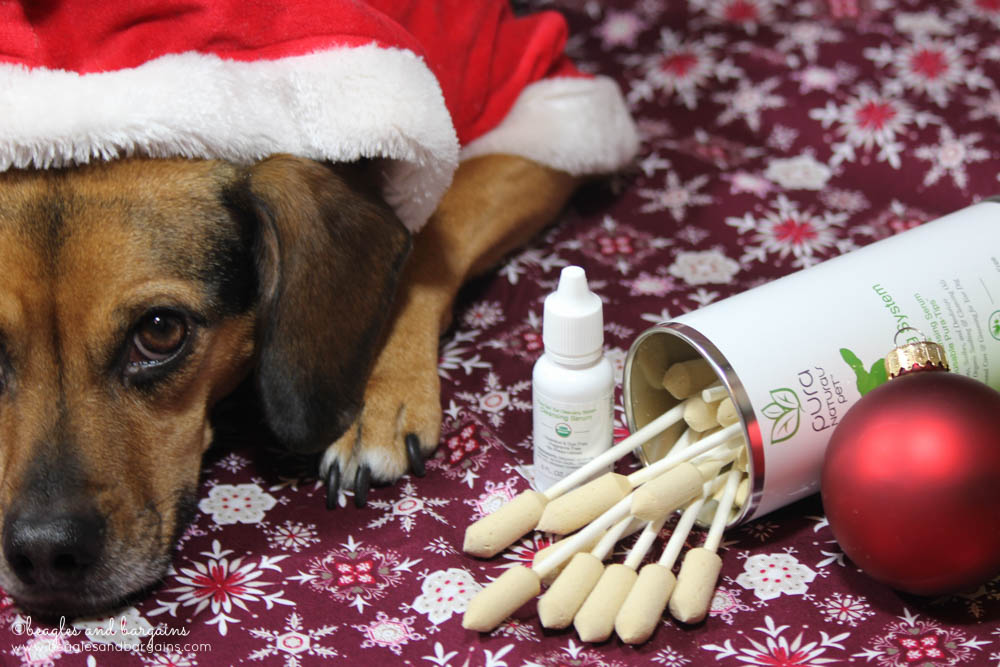 Pura Naturals Pet Ear Cleansing System helps protect dogs from ear infections