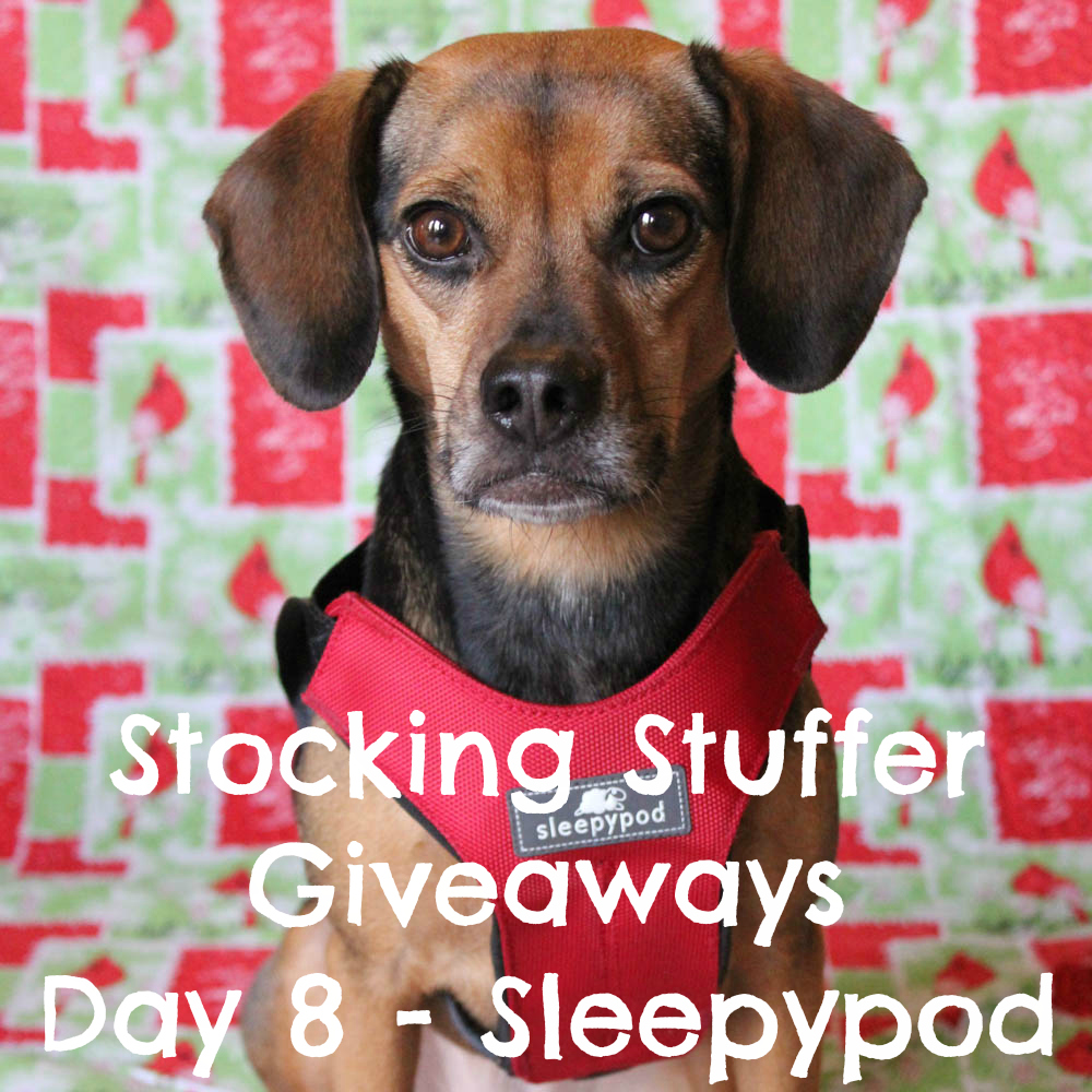 Beagles & Bargains Stocking Stuffer Giveaways 2016 - Day 8 - Sleepypod Clickit Sport
