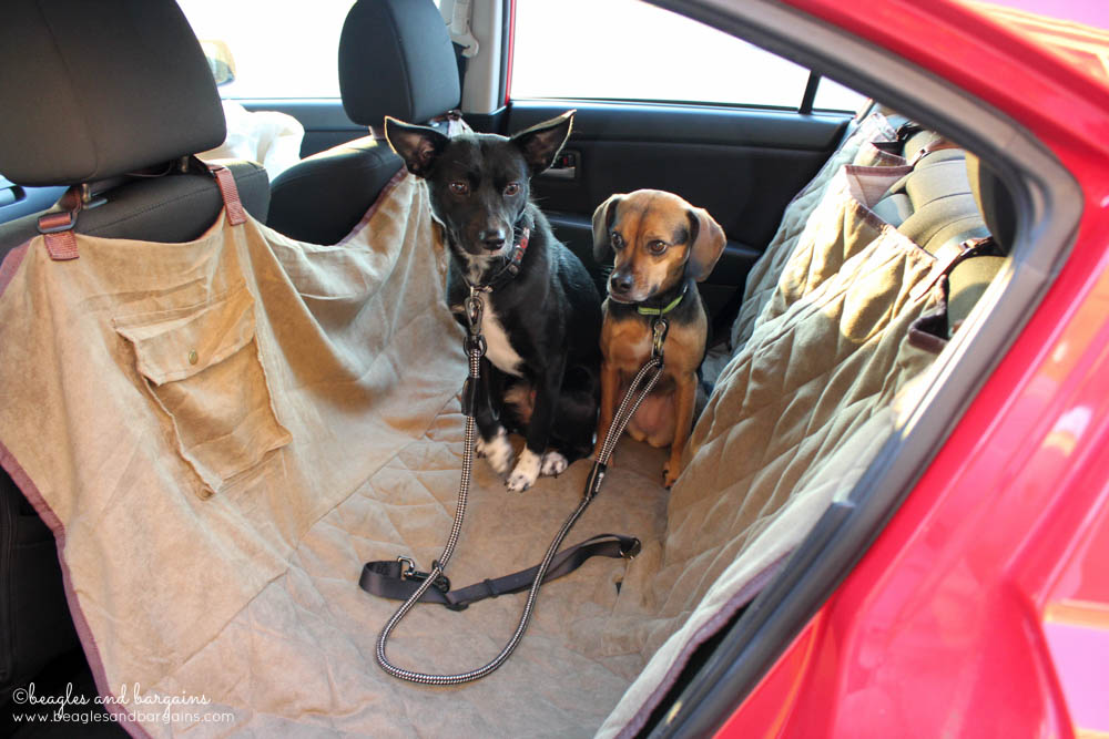 Solvit Deluxe Hammock Seat Cover protects car seats from dirty dogs on car trips