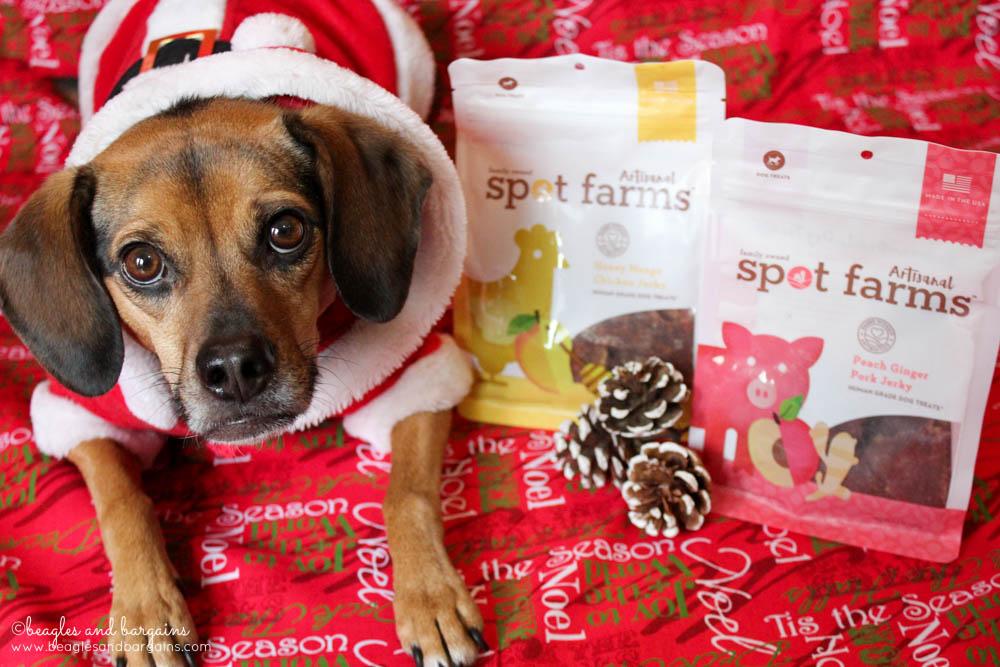 Luna can't wait to try Spot Farms new Artisanal Jerky Treats