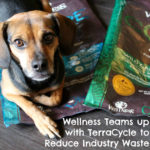 Pet Food Company #WellnessPet Teams up with TerraCycle to Reduce Industry Waste