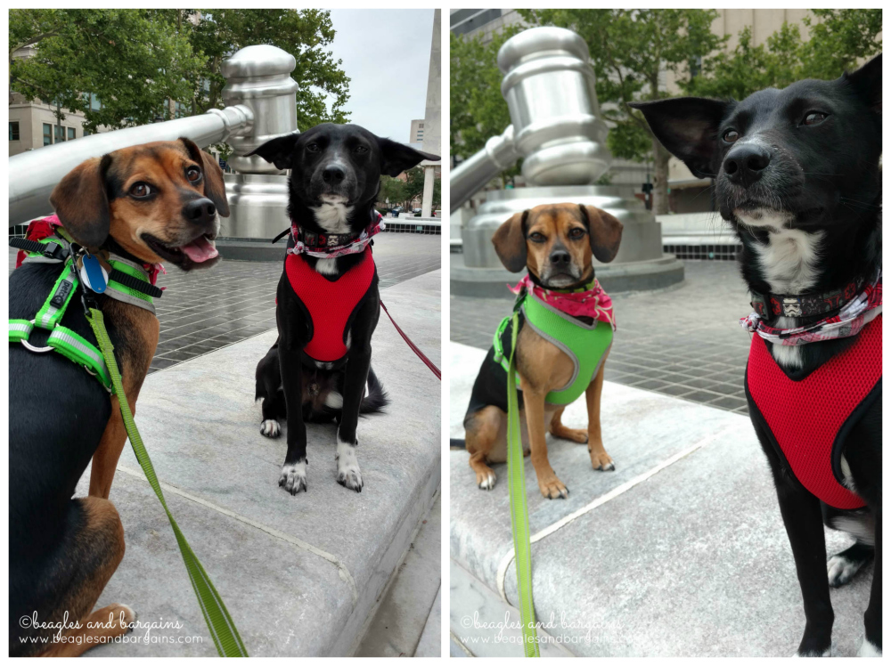 Ralph and Luna with the World's Largest Gavel in Columbus, Ohio