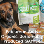 Petcurean Expands Pet Food Line with Organic, Sustainably Produced GATHER