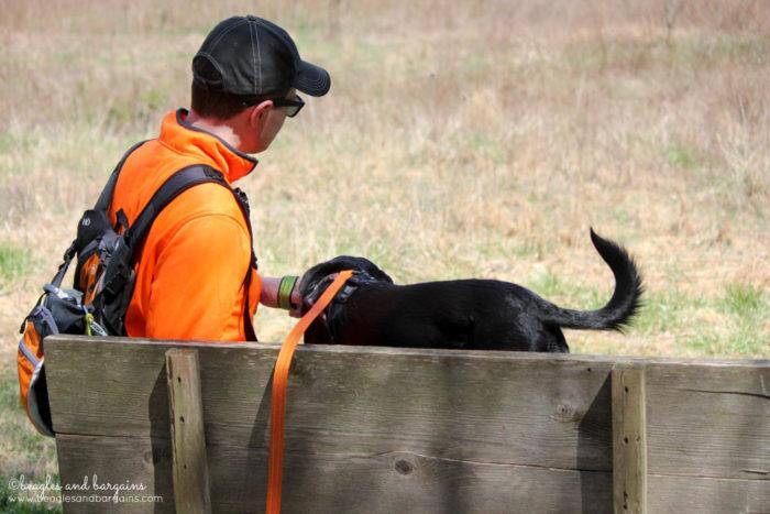 Dog Friendly Hiking at Blue Ridge Center for Environmental Stewardship