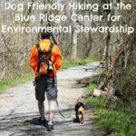 Dog Friendly Hiking at the Blue Ridge Center for Environmental Stewardship