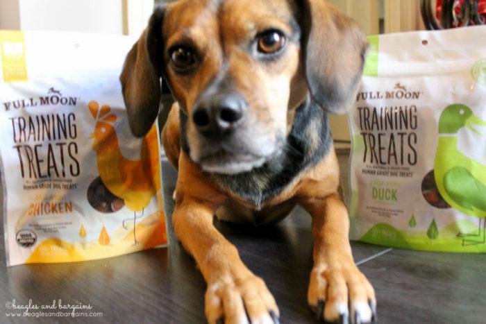 5 Identifiable Characteristics of a Quality Dog Training Treat - Full Moon Training Treats