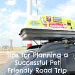 Tips for Planning a Successful Pet Friendly Road Trip