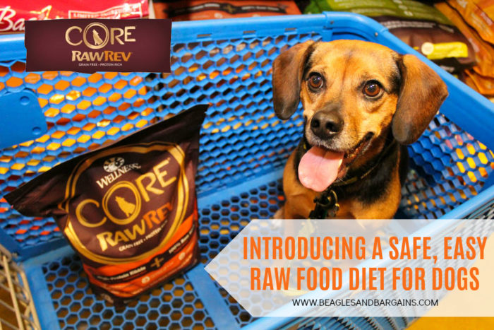 Introducing a Safe, Easy Raw Food Diet Through Wellness CORE RawRev for Dogs - Save at PetSmart!