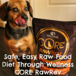 Introducing a Safe, Easy Raw Food Diet Through Wellness CORE RawRev for Dogs