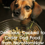 Delicious, Cooked to Order Dog Food from NomNomNow + Coupon Code
