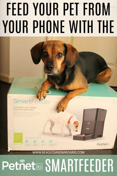Feed Your Pet From Your Phone with the Petnet SmartFeeder - Trial & Review