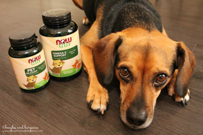Luna with Omega-3 Support and Pet Relaxant from NOW Pets Supplements