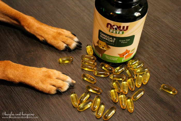Omega-3 Support - fish oil softgels from NOW Pets Supplements for dogs and cats