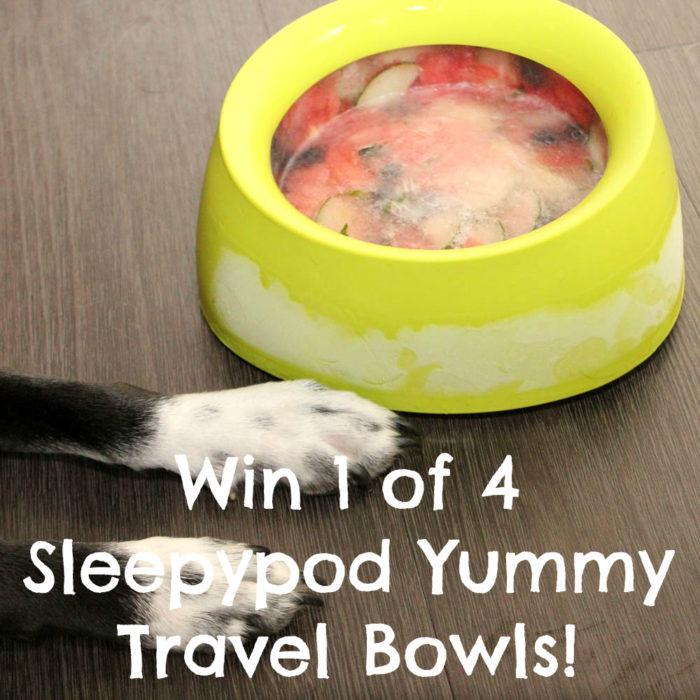 Win 1 of 4 Sleepypod Yummy Travel Bowls!
