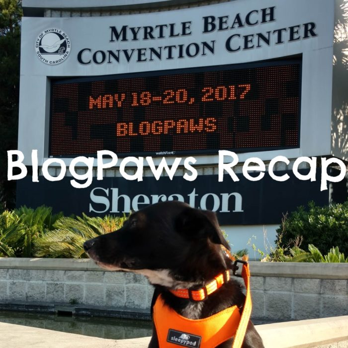Extremely Belated BlogPaws Conference Recap Post from a Blogger Who Clearly Has Timeliness Issues