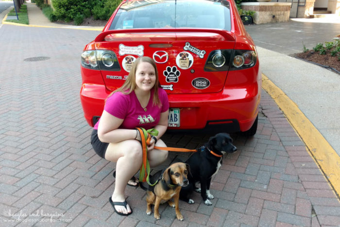 BlogPaws 2017 - Road trip with two dogs