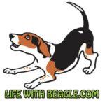 Life With Beagle Logo