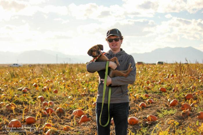 Pumpkin Picking with Luna at Rock Creek Farm