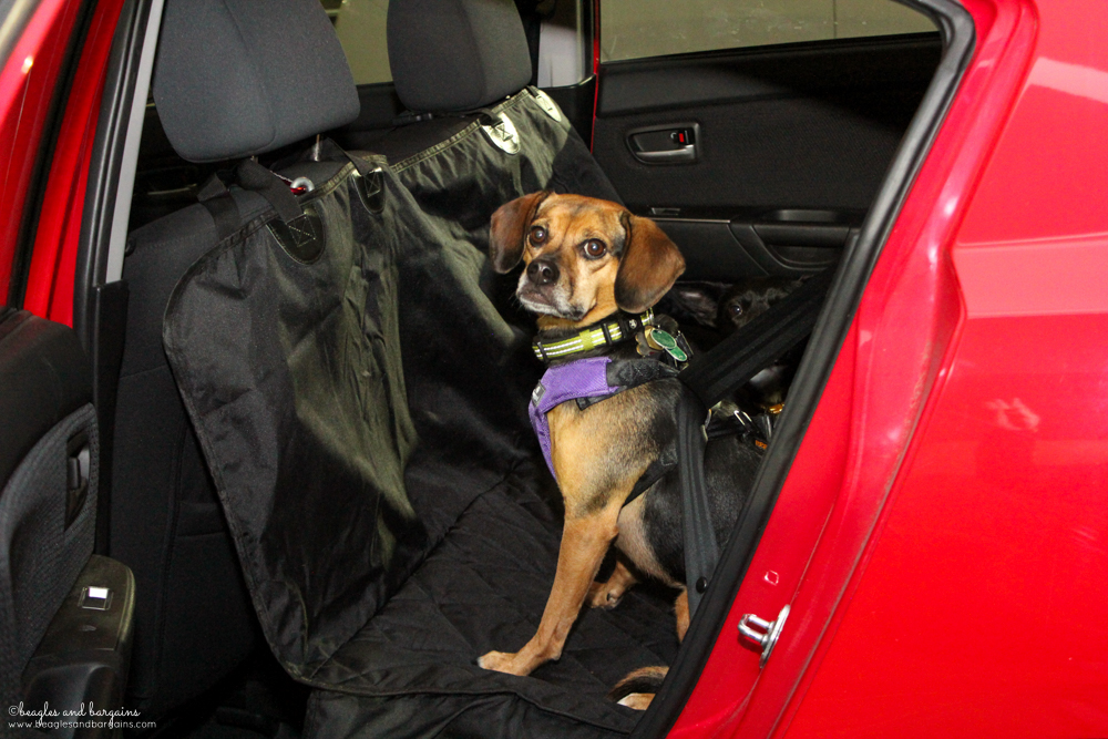 5 reasons to get a car seat cover for pets stocking stuffer giveaways sponsored by 4knines. Black Bedroom Furniture Sets. Home Design Ideas