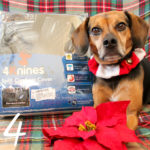 5 Reasons to Get a Car Seat Cover for Pets | Stocking Stuffer Giveaways | Win a 4Knines Car Seat Cover for Pets | #sponsored by 4Knines