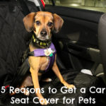 5 Reasons to Get a Car Seat Cover for Pets {Stocking Stuffer Giveaway – Day #4}