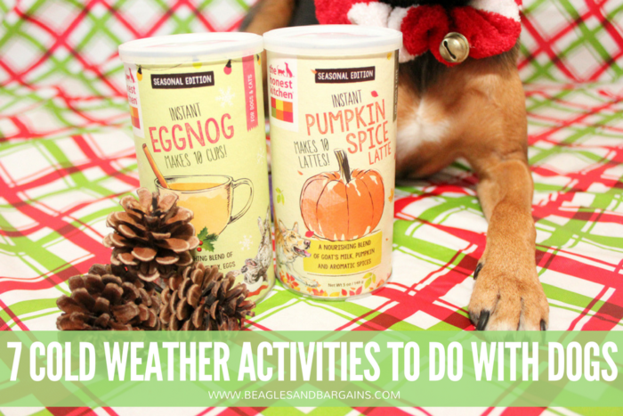 7 Cold Weather Activities to Do with Your Dog | Stocking Stuffer Giveaways | #sponsored by The Honest Kitchen