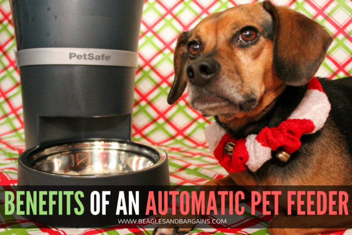 Benefits of an Automatic Pet Feeder | Stocking Stuffer Giveaways | #sponsored by PetSafe