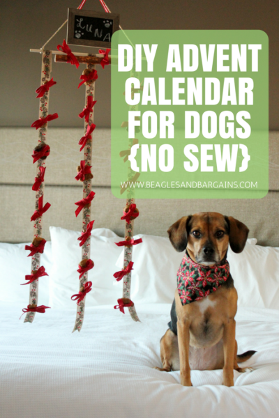 DIY Advent Calendar for Dogs - No Sew Craft Tutorial
